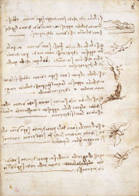 Codex on the Flight of Birds