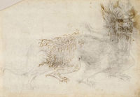 Study of a dragon The Royal Collection © 2005, Her  Majesty Queen Elizabeth II